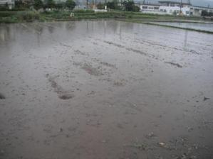 2011_06020021