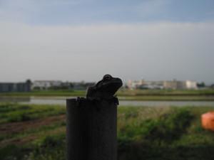 2012_0615_11