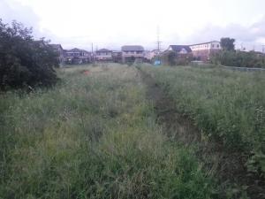 Photo_20200911215101